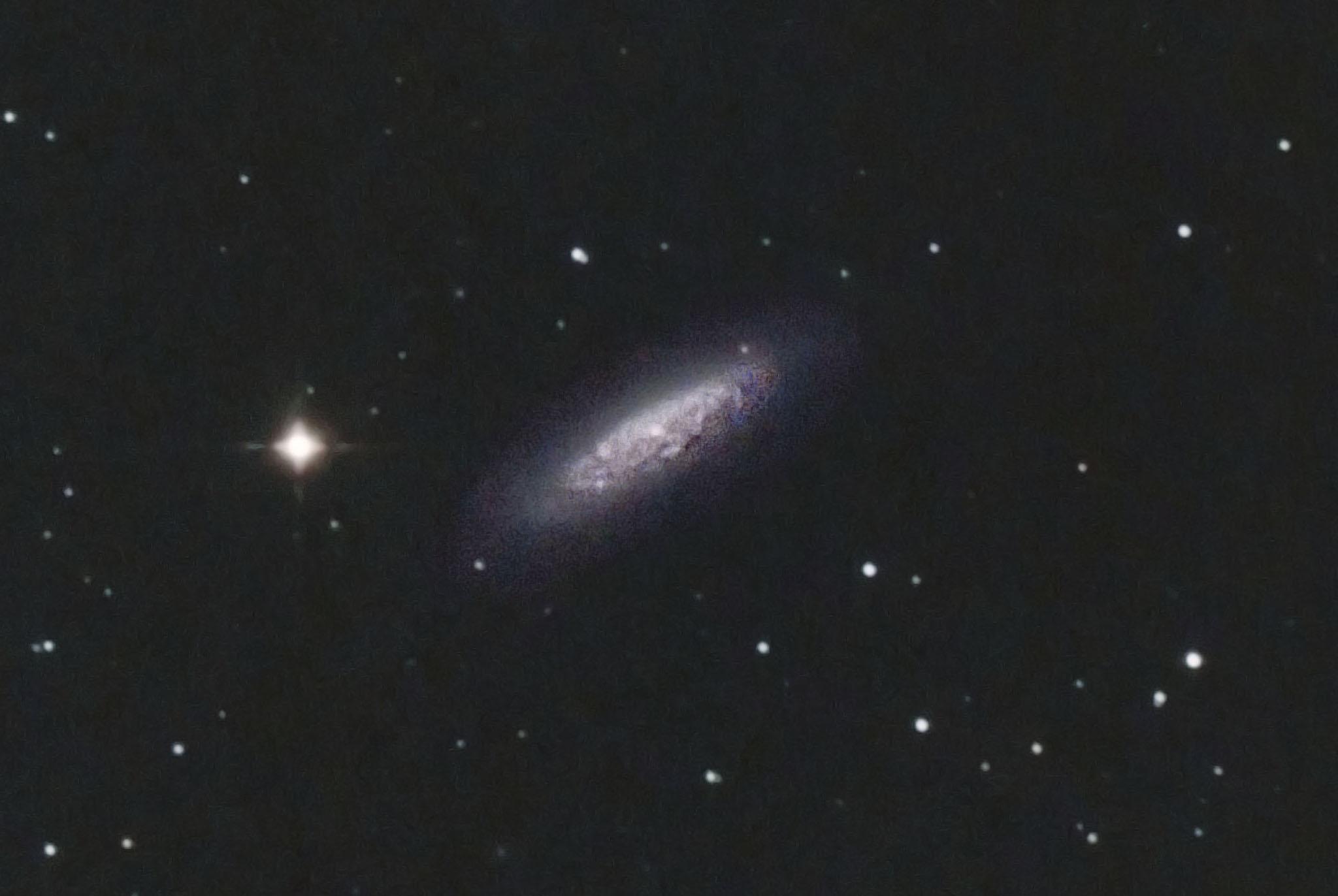 NGC 6503 in Draco