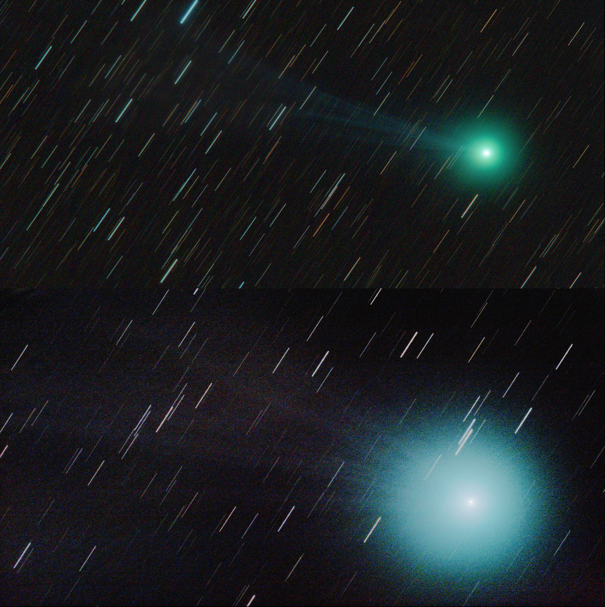 The comet Lovejoy C/2014 Q2