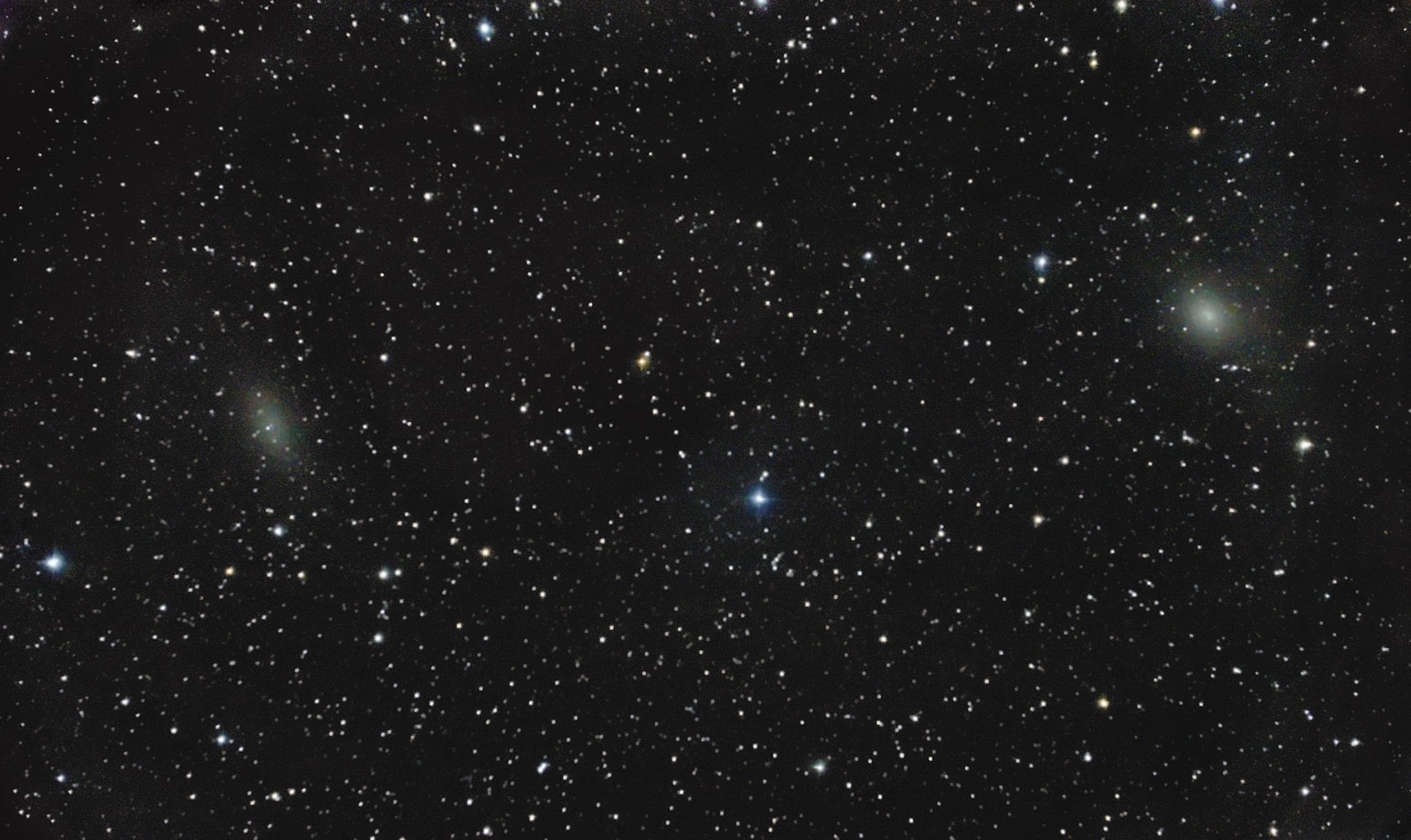 NGC 147 and 185, members of the Local Galaxy Group 局所銀河群
