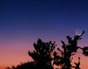 PanStarrs Comet and Moon パンスターズ彗星 と月