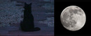 月 と スモーキー