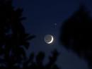 月と木星とその衛星